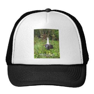 Norfolk Unicorn Hoax Unmasked Trucker Hat