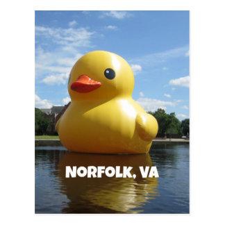 Norfolk, Virginia (Duck) Postcard