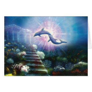Nori Dolphins Card