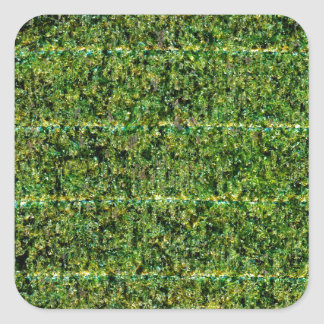 Nori - Dried Seaweed For Sushi Square Sticker