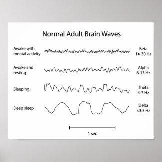 Normal adult brain waves eeg Poster