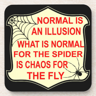 Normal Is An Illusion What Is Normal To The Spider Coaster