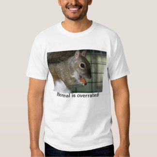 Normal is overrated! t-shirt