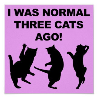 Normal Three Cats Ago Funny Poster Sign