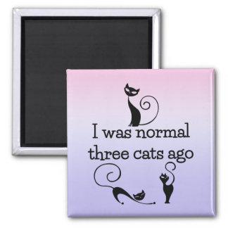 Normal Three Cats Ago Humorous Fridge Magnet