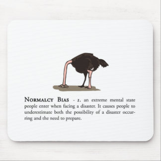 Normalcy Bias Mouse Pad