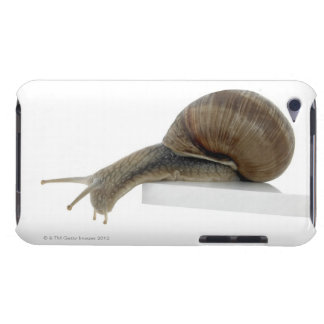 Normalsnail iPod Touch Cover