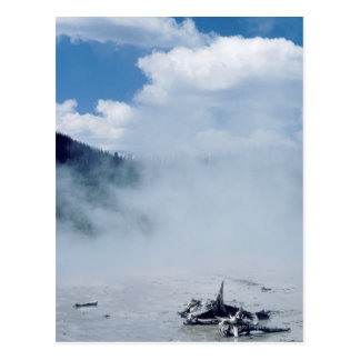 Norris Geyser Basin at Yellowstone National Park Postcard