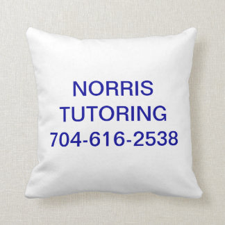 Norris Tutoring Pillow