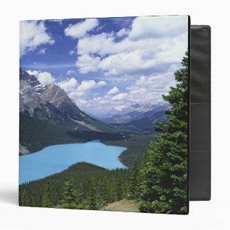 """Norteamérica, Canadá, Alberta, jaspe 6 Carpeta 1 1/2"""""""