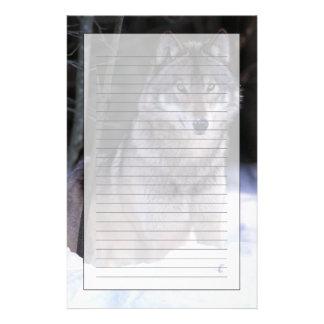 Norteamérica, Canadá, Canadá del este, lobo gris Papeleria De Diseño