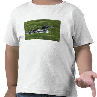 Norteamérica, Canadá, Columbia Británica, laca Le Camisetas