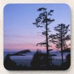 Norteamérica, Canadá, isla de Vancouver, árboles Posavaso