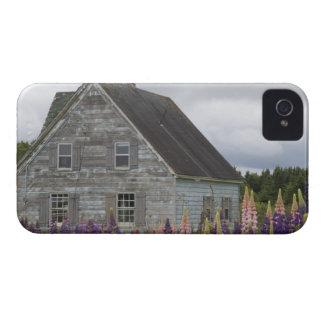 Norteamérica, Canadá, Isla del Principe Eduardo, iPhone 4 Fundas