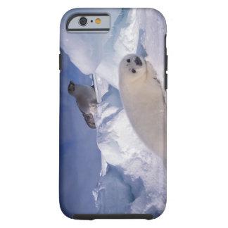 Norteamérica, Canadá, Quebec, la 2 de Iles de Funda De iPhone 6 Tough