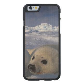 Norteamérica, Canadá, Quebec, la de Iles de 2 2 Funda De iPhone 6 Carved® De Arce