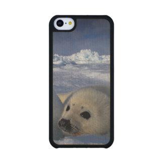 Norteamérica, Canadá, Quebec, la de Iles de 2 2 Funda De iPhone 5C Slim Arce