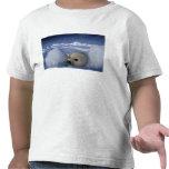 Norteamérica, Canadá, Quebec, la de Iles de Camiseta