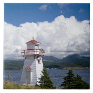 Norteamérica, Canadá, Terranova y Azulejo Cuadrado Grande