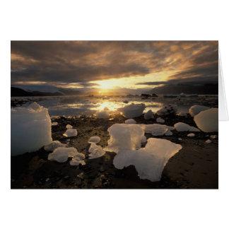 Norteamérica, los E.E.U.U., Alaska, bahía de hielo Tarjeta De Felicitación