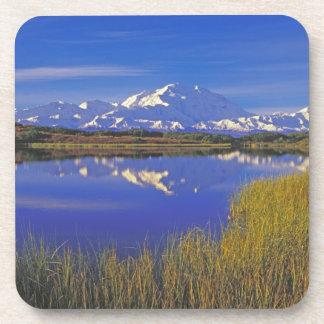 Norteamérica, los E.E.U.U., Alaska, Denali NP, Posavasos