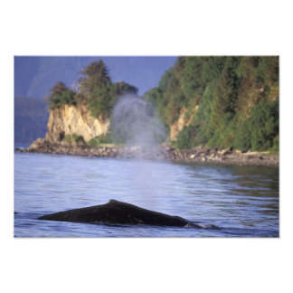 Norteamérica, los E.E.U.U., Alaska, paso interior Fotografías