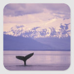 Norteamérica, los E.E.U.U., Alaska, paso interior Pegatina Cuadrada