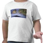 Norteamérica, los E.E.U.U., Alaska, paso interior Camiseta