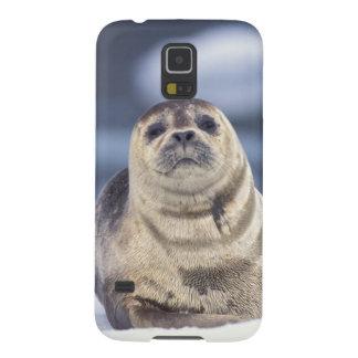 Norteamérica, los E.E.U.U., Alaska, S.E., Le Conte Funda Para Galaxy S5