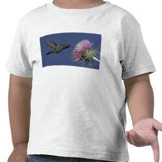 Norteamérica, los E.E.U.U., Arizona. Amplio-cargad Camiseta