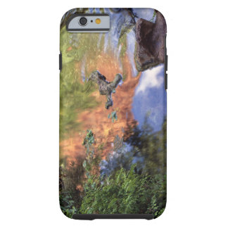 Norteamérica, los E.E.U.U., Arizona, barranco de Funda Para iPhone 6 Tough