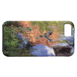 Norteamérica, los E.E.U.U., Arizona, barranco de iPhone 5 Carcasa