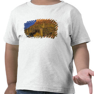Norteamérica los E E U U Arizona cactus 2 del Camiseta