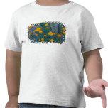 Norteamérica, los E.E.U.U., Arizona, cactus del Camisetas