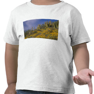 Norteamérica los E E U U Arizona cactus del tu Camisetas