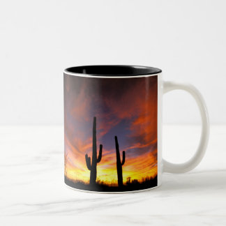 Norteamérica los E E U U Arizona desierto de S Taza De Café