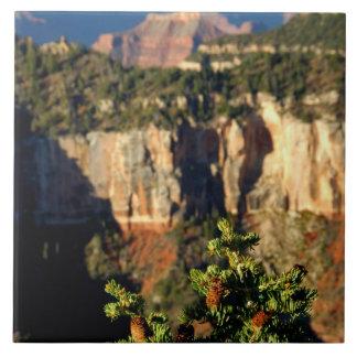 Norteamérica, los E.E.U.U., Arizona, Gran Cañón Azulejo Cuadrado Grande