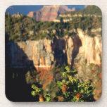 Norteamérica, los E.E.U.U., Arizona, Gran Cañón Posavasos