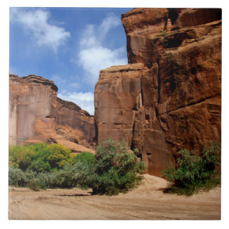 Norteamérica, los E.E.U.U., Arizona, indio de Nava Teja