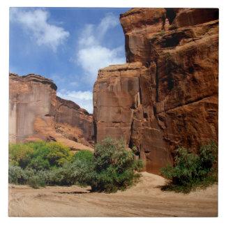Norteamérica, los E.E.U.U., Arizona, indio de Nava Azulejo Cuadrado Grande