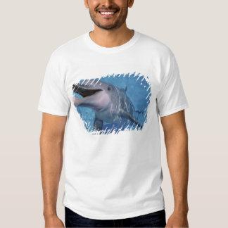 Norteamérica, los E.E.U.U., Hawaii. Delfín 3 Remeras