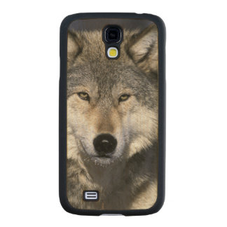 Norteamérica, los E.E.U.U., Minnesota. Canis del Funda De Galaxy S4 Slim Arce