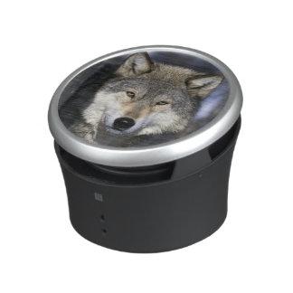 Norteamérica, los E.E.U.U., Minnesota. Canis del l Altavoz Bluetooth