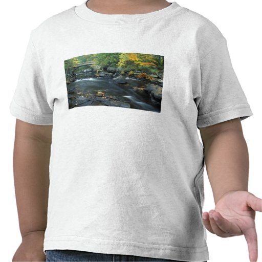 Norteamérica, los E.E.U.U., NH, el puente en los Camiseta