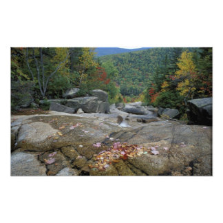 Norteamérica, los E.E.U.U., NH, follaje de otoño e Fotografía