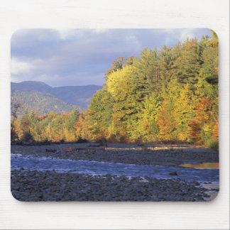 Norteamérica, los E.E.U.U., NH, río de Saco. Adoqu Alfombrillas De Ratón