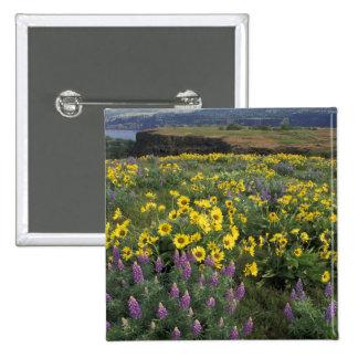 Norteamérica, los E.E.U.U., Oregon, el río Columbi Pin Cuadrado