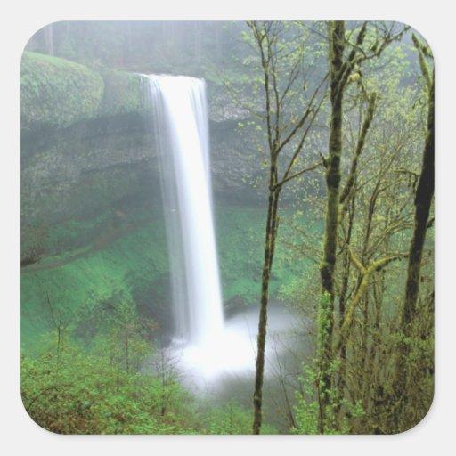 Norteamérica, los E.E.U.U., Oregon, plata cae Colcomania Cuadrada
