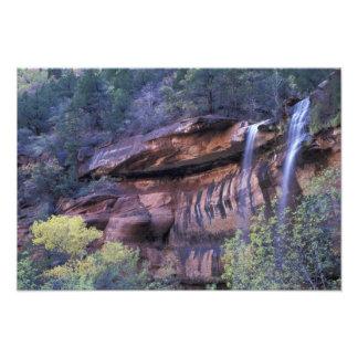Norteamérica, los E.E.U.U., Utah, parque nacional  Fotografía