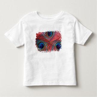 Norteamérica, los E.E.U.U., WA, Redmond, pavo real Camisas
